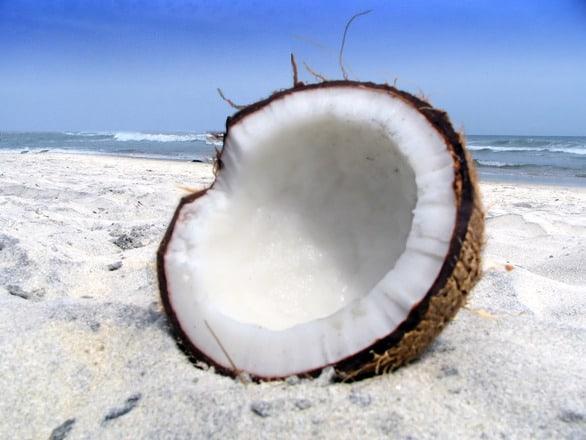 ¿Cuáles Son los ácidos grasos del Coco?