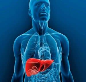 Cómo prevenir el cáncer de hígado